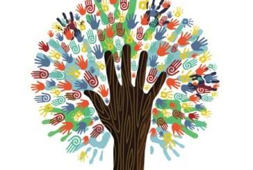 Take the Diversity Challenge